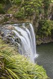 Whangarei Falls, Northland, New Zealand. Whangarei Falls on the Hatea River in Northland, New Zealand Stock Images