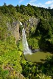 Whangarei Falls NZ Royalty Free Stock Image