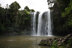 Whangarei falls Royalty Free Stock Image