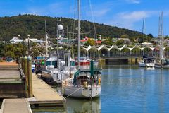 Whangarei marina in summer day Royalty Free Stock Image