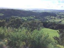 Whangarei, Nuova Zelanda Fotografie Stock