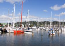 Whangarei Town Basin - NZ Stock Images