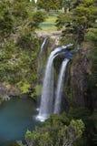Whangarei waterfall Royalty Free Stock Photography