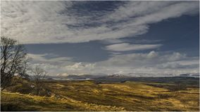 Whangie&Campsie Fells - Schotland Stock Afbeelding