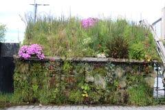 Whare plantado Maori Hut, Christchurch imagen de archivo libre de regalías