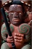 Whare Waka (kanothuset) royaltyfria foton