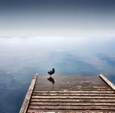 Wharf Stock Photography