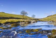 wharfe scénique de fleuve Photos libres de droits