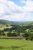 Wharfedale. The rural valley in the Yorkshire Dales National Park stock image