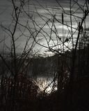 Optical illusion. What appears to be a sunset through branches is actually an optical illusion. The clouds in the sky are actually ice on a small pond. This royalty free stock images