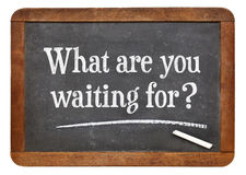 Free What Are Waiting For Royalty Free Stock Image - 45437266