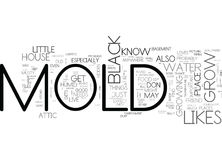 What Black Mold Likes To Grow On Your House S Trouble Spots Word Cloud Royalty Free Stock Images