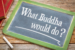 What Buddha would do question Royalty Free Stock Images