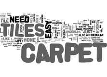 What Can Carpet Tiles Do For You Word Cloud Stock Photos