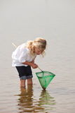 What did I catch. Young kid checking the content of her net to see if she has caught anything Royalty Free Stock Photography