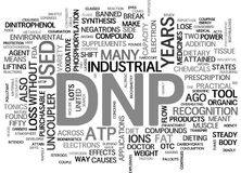 What Is Dnp Word Cloud Royalty Free Stock Photos