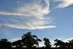 What do you see. Evening sky with clouds Royalty Free Stock Image