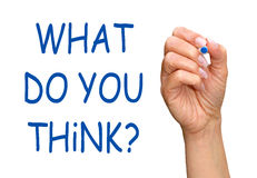 What Do You Think Question Royalty Free Stock Images
