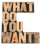 What do you want question. Isolated text in vintage letterpress wood type stock image