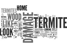 What Does Termite Damage Look Like Word Cloud Stock Photography