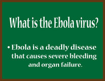 What is the Ebola virus? Stock Photos