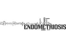 What Is Endometriosis And What Are Endometriosis Stages Word Cloud Royalty Free Stock Photo
