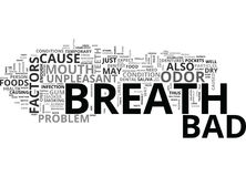 What Are The Factors That Cause Bad Breath Word Cloud Stock Photography