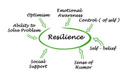 What contribute to resilience Royalty Free Stock Image