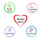 What gives Healthy heart. Four factors supporting Healthy heart royalty free stock photography