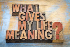 What gives my life meaning?. Word abstract in vintage letterpress wood type blocks royalty free stock photos