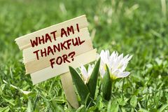 What am i thankful for. On wooden sign in garden with white spring flower Royalty Free Stock Image