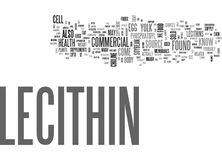 What Is Lecithin Word Cloud vector illustration