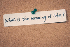 What is the meaning of life?. Note pin on the bulletin board royalty free stock photography