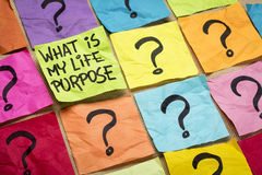 What is my life purpose question Stock Photography