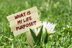 What is my life purpose. On wooden sign in garden with spring flower Royalty Free Stock Photos