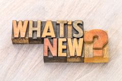 What is new word abstract in wood type. What is new - word abstract in vintage letterpress wood type Stock Image