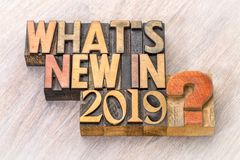 What is new in 2019 word abstract in wood type. What is new in 2019 - word abstract in vintage letterpress wood type royalty free stock images