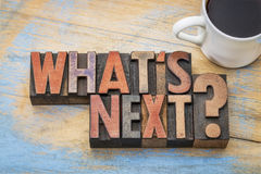 What is next question in wood type Stock Photography