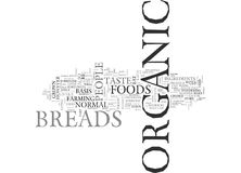 What Is Organic Breads Word Cloud Royalty Free Stock Photography