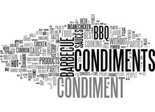 What S A Barbecue Party Without Some Condiments Word Cloud Stock Photo