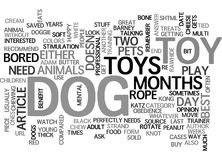 What S The Best Dog Toy For Your Adult Dog Word Cloud Stock Images