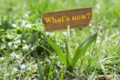 What`s new. On wooden sign in garden with white spring flower royalty free stock photo