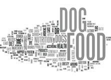 What S In Your Dog Food Word Cloud Stock Photo