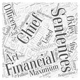 25 What is the Sarbanes Oxley Act word cloud concept  background. Text Royalty Free Stock Photo