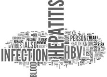 What Should I Know About Hepatitis B Word Cloud Royalty Free Stock Photo