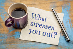 What stresses you out? Stock Photos