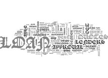 What To Do If You Re Denied A Loan Word Cloud. WHAT TO DO IF YOU RE DENIED A LOAN TEXT WORD CLOUD CONCEPT royalty free illustration