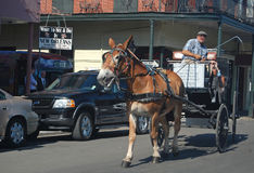 What to see and do in New Orleans. Royalty Free Stock Image