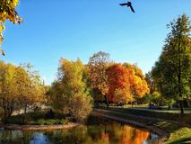 What a wonderful day!. Golden October at Yekaterininsky park, Moscow, October, 2018 royalty free stock photos