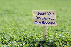 What you dream you can become. Wooden sign in grass,blur background royalty free stock image